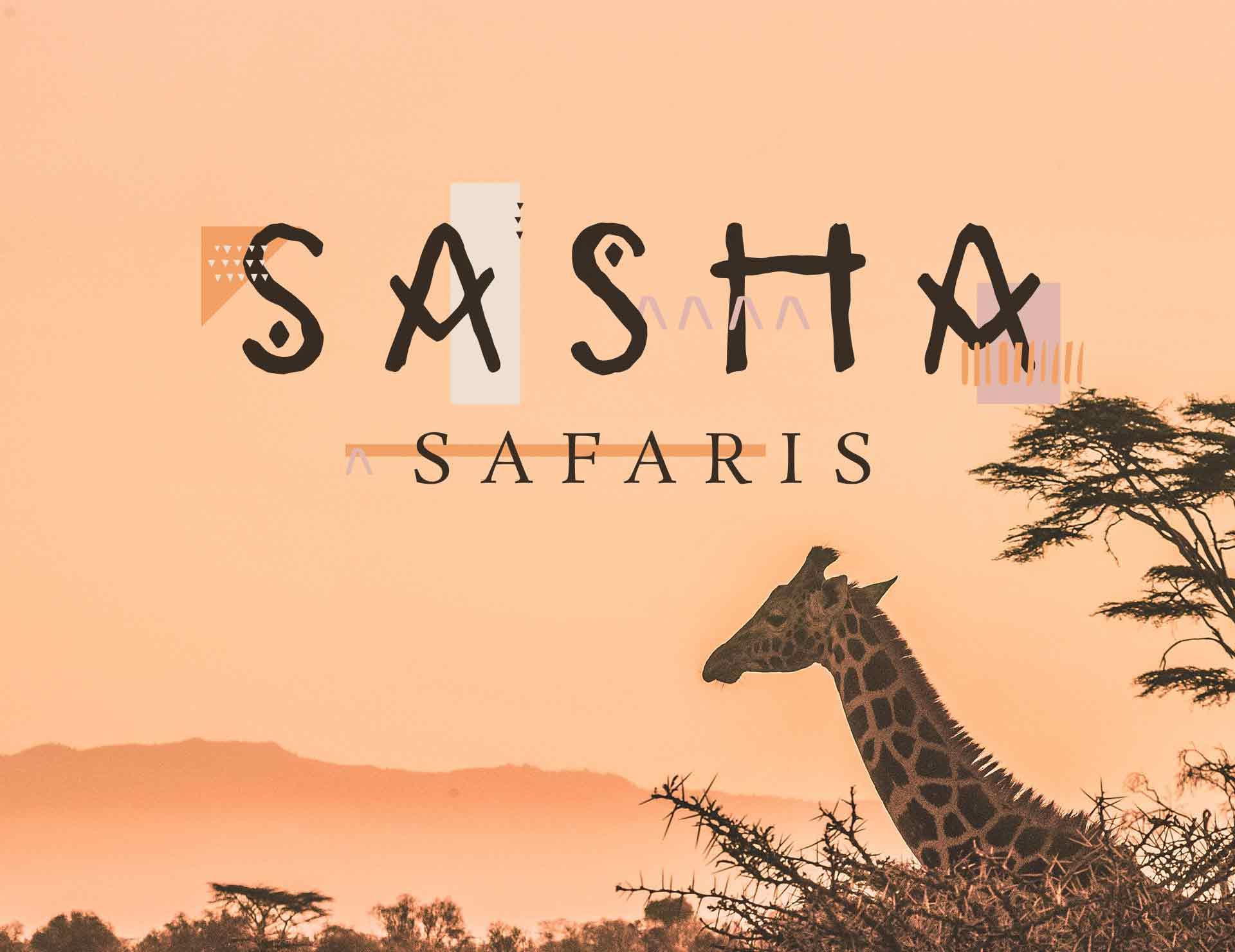 Safari Branding